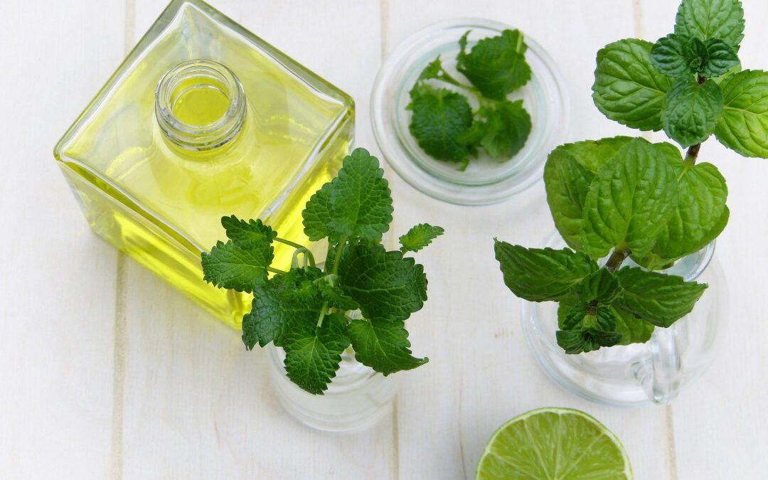 Weiterbildung Qualität der Öle, Etikettierung und Preis- u. Duftbeurteilung ätherischer Öle