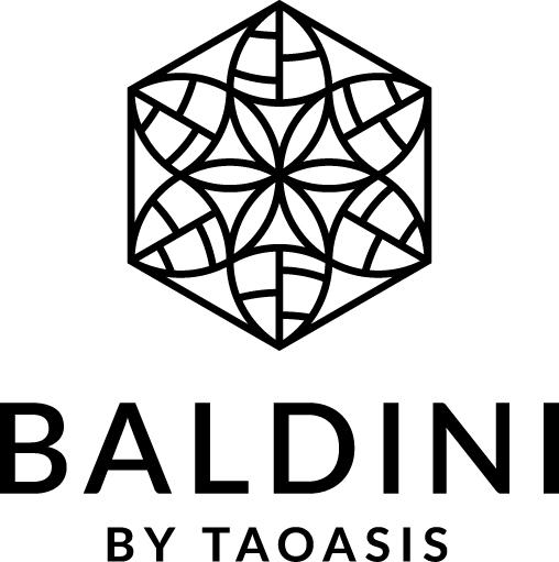Logo Baldini